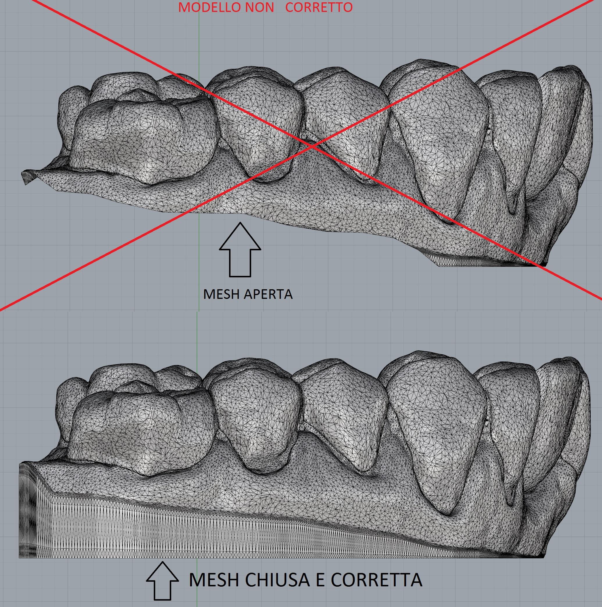 Modello_corretto_stampa3d_dental_printer_service
